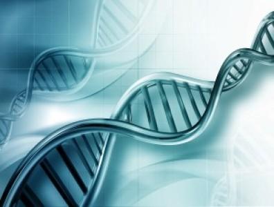 Terapia génica en enfermedades inmunodeficientes