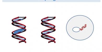 Ejemplos de aplicaciones de terapia génica