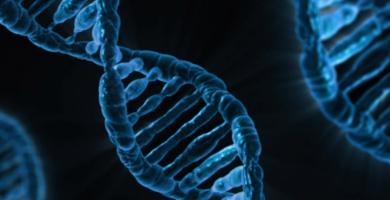 terapia genica SNC