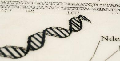 terapia génica y clonación