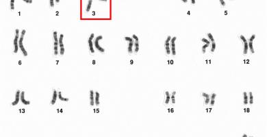 terapia génica y genoma humano