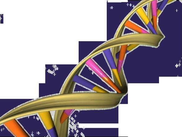 aplicaciones terapia genica