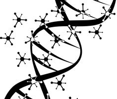 genica