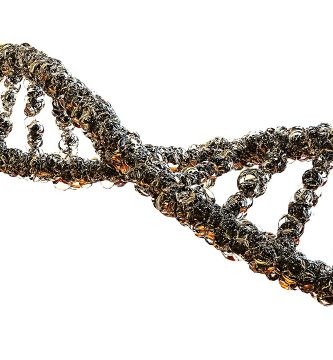 análisis genéticos